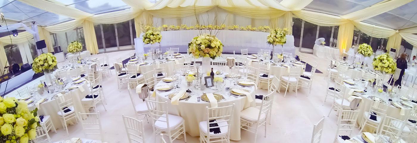 Rooneys the hiring specialists weddings miss zimbabwe 2014 junglespirit Choice Image